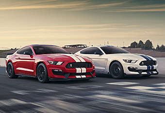 Mustang GT350 Live Action